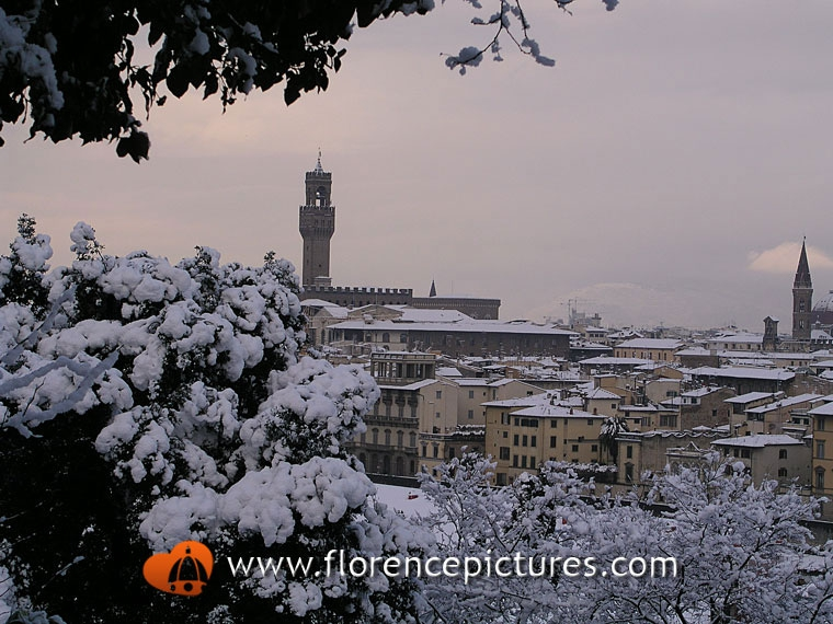 View of downtown Florence